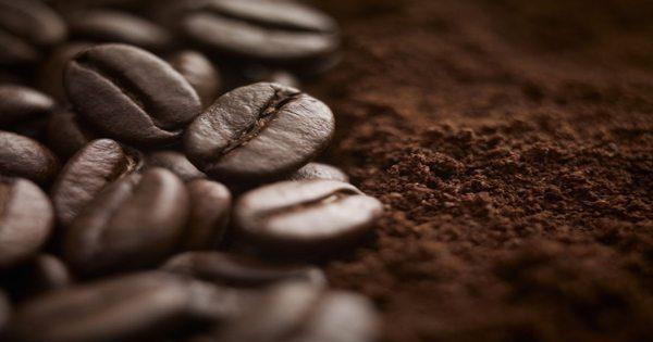 blog de imágenes de granos de café y terrenos
