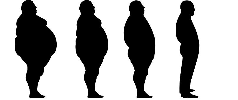 silueta de la pérdida de peso