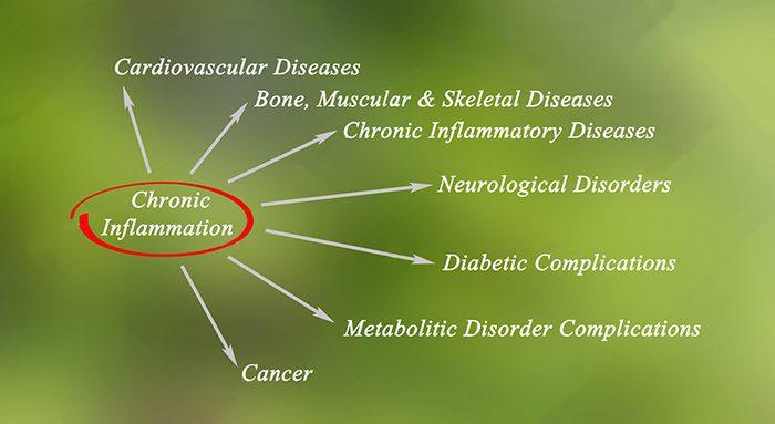 chronic inflammation info