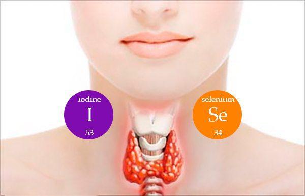Environmental Factors Behind Thyroid Disease   Wellness Clinic