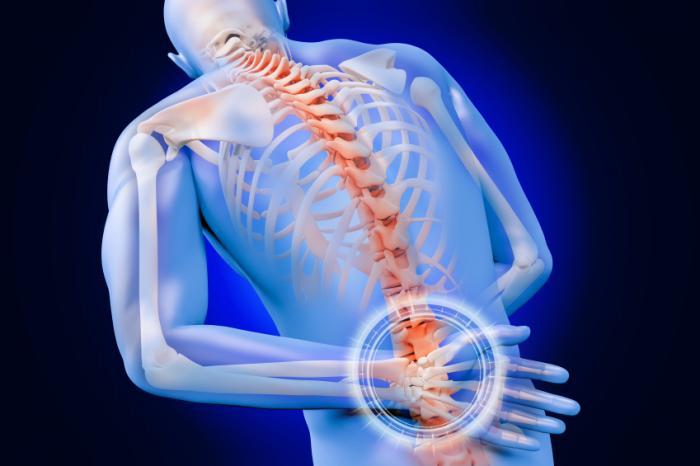 Imagen del cuerpo humano que muestra la estructura esquelética con énfasis en el disco herniado lumbar. | El Quiropráctico El Paso, TX