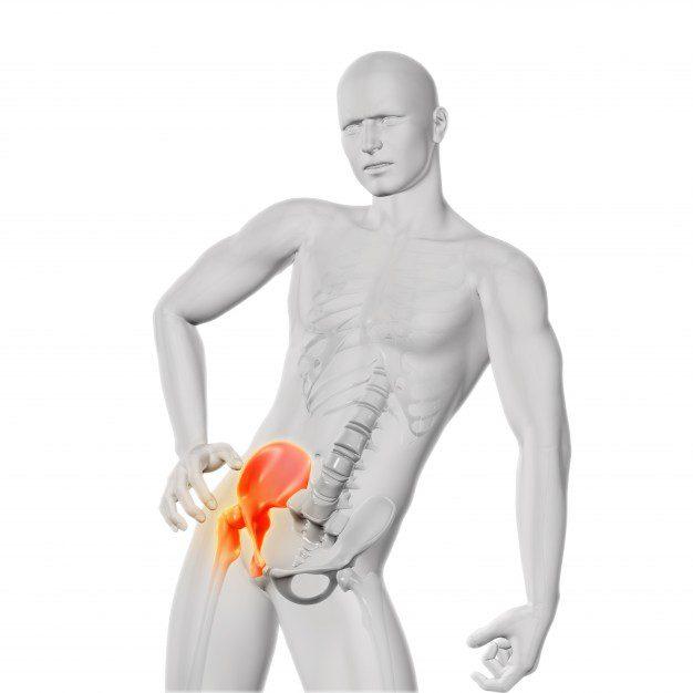 Posicionamiento de caderas y anatomía de resonancia magnética | El ...