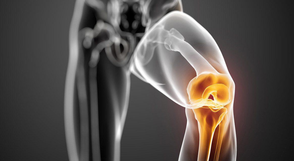 Imagen de portada de la ciencia básica de la rodilla humana Menisci   El Paso, TX Quiropráctico