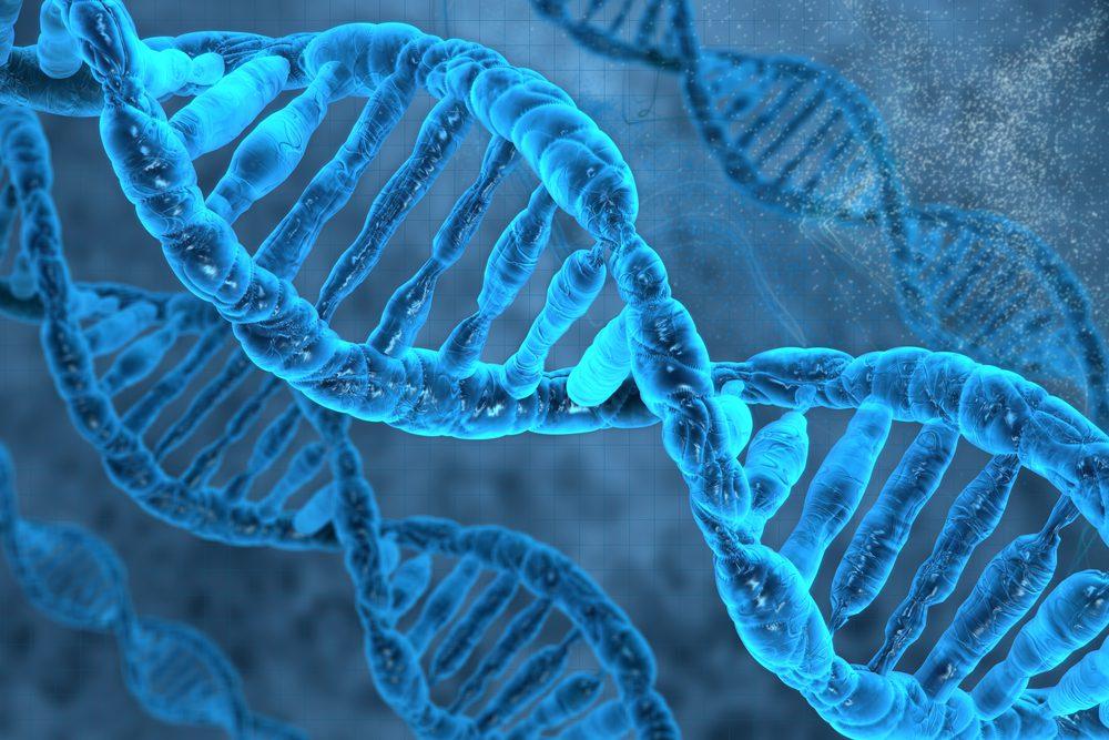 Close-up image of a DNA strand demonstrating Nrf2 activation.
