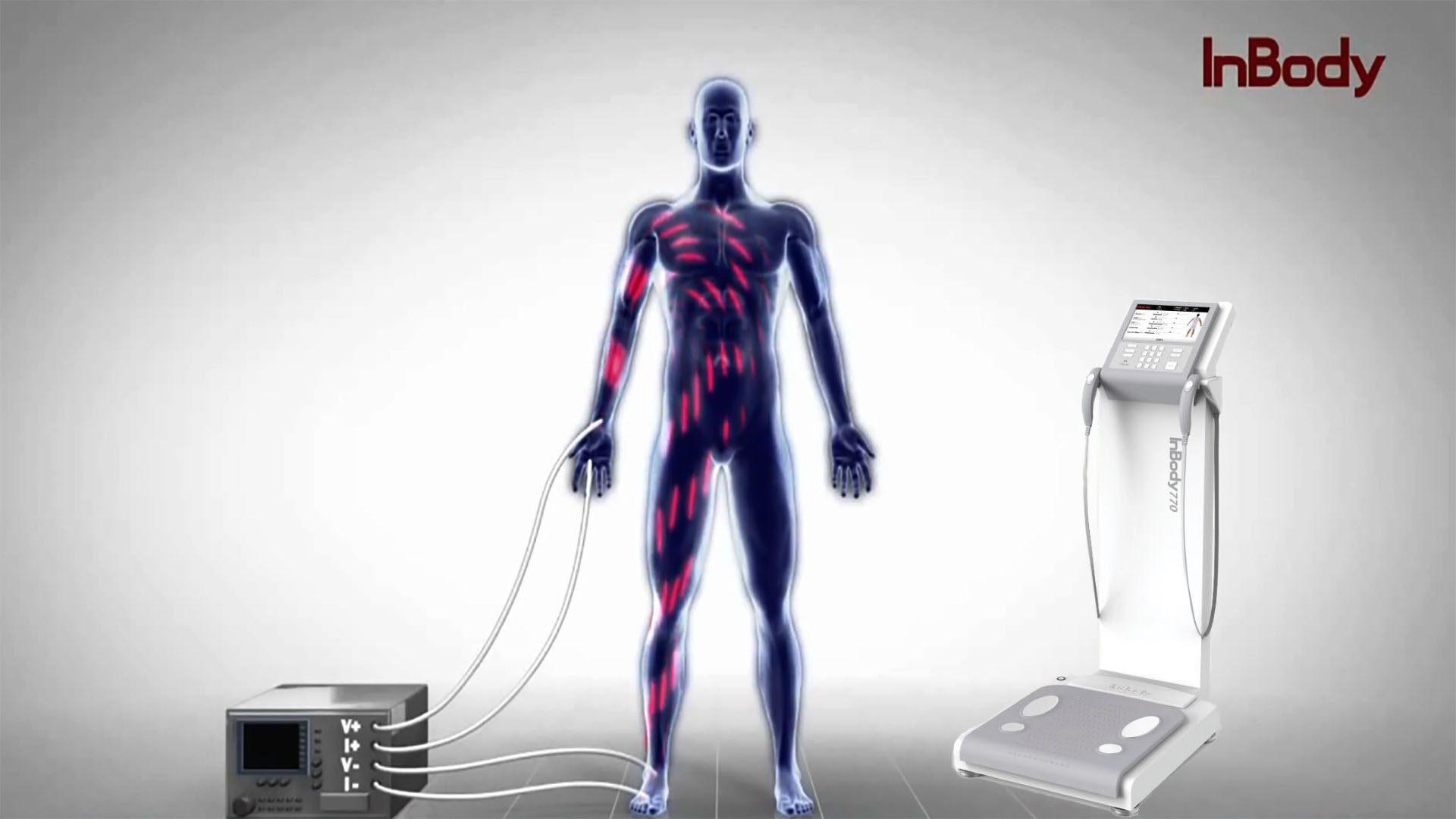 Análisis bioeléctrico el paso tx.