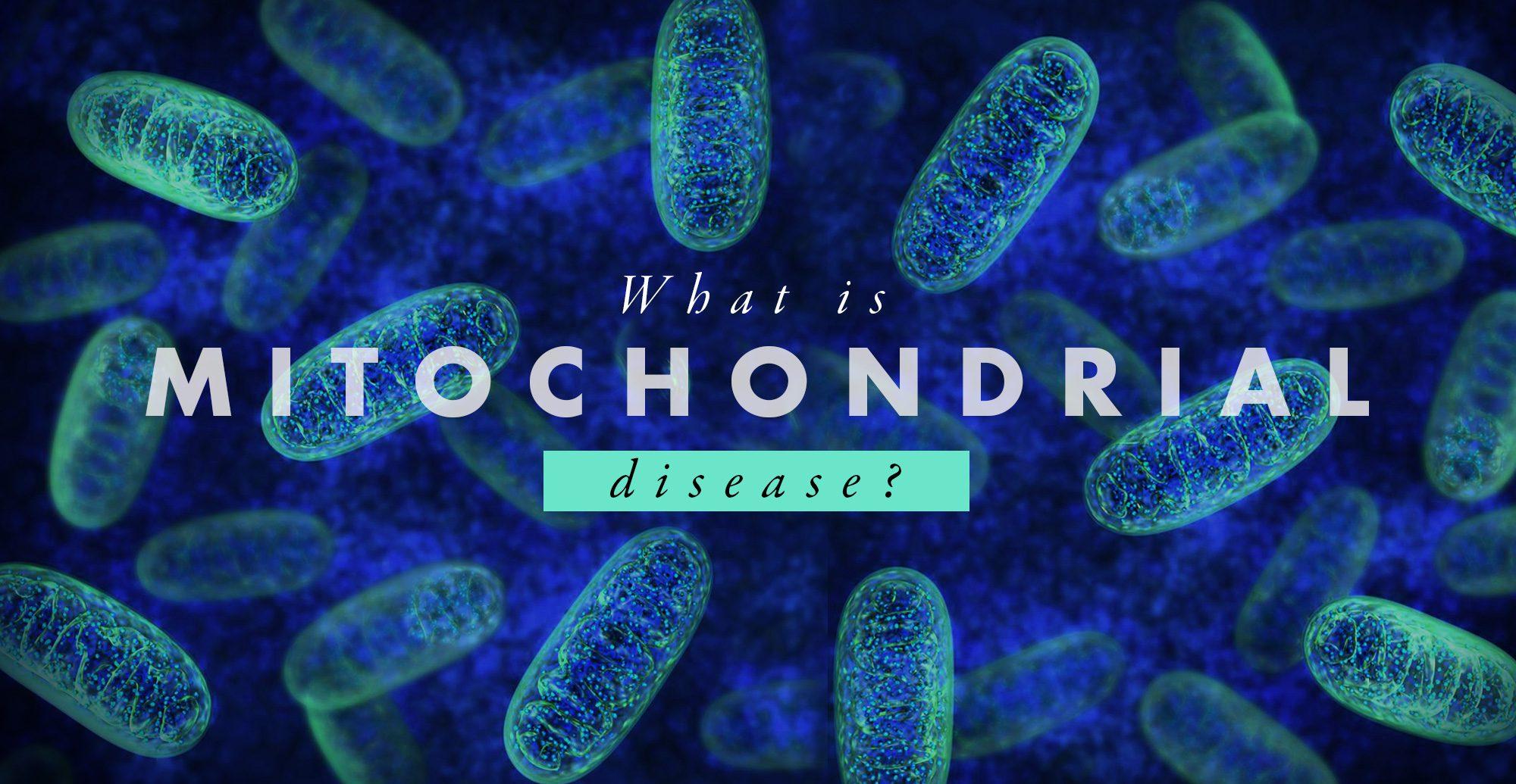 ¿Qué es la enfermedad mitocondrial? El | El Paso, TX Quiropráctico