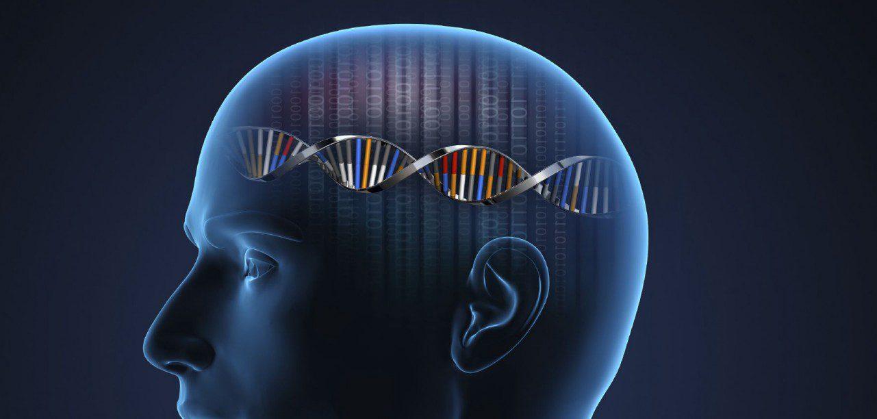 Neurología Funcional: Activación Nrf2 para Enfermedades Neurológicas | El Paso, TX Quiropráctico