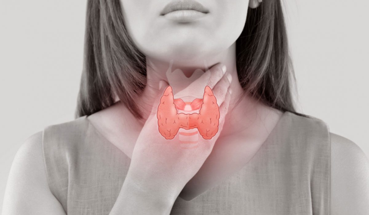 Functional Neurology: Obesity and Thyroid Dysfunction   El Paso, TX Chiropractor