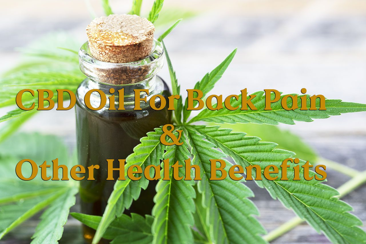 11860 Vista Del Sol, Ste. 128 CBD Oil for Back Pain and Other Health Benefits