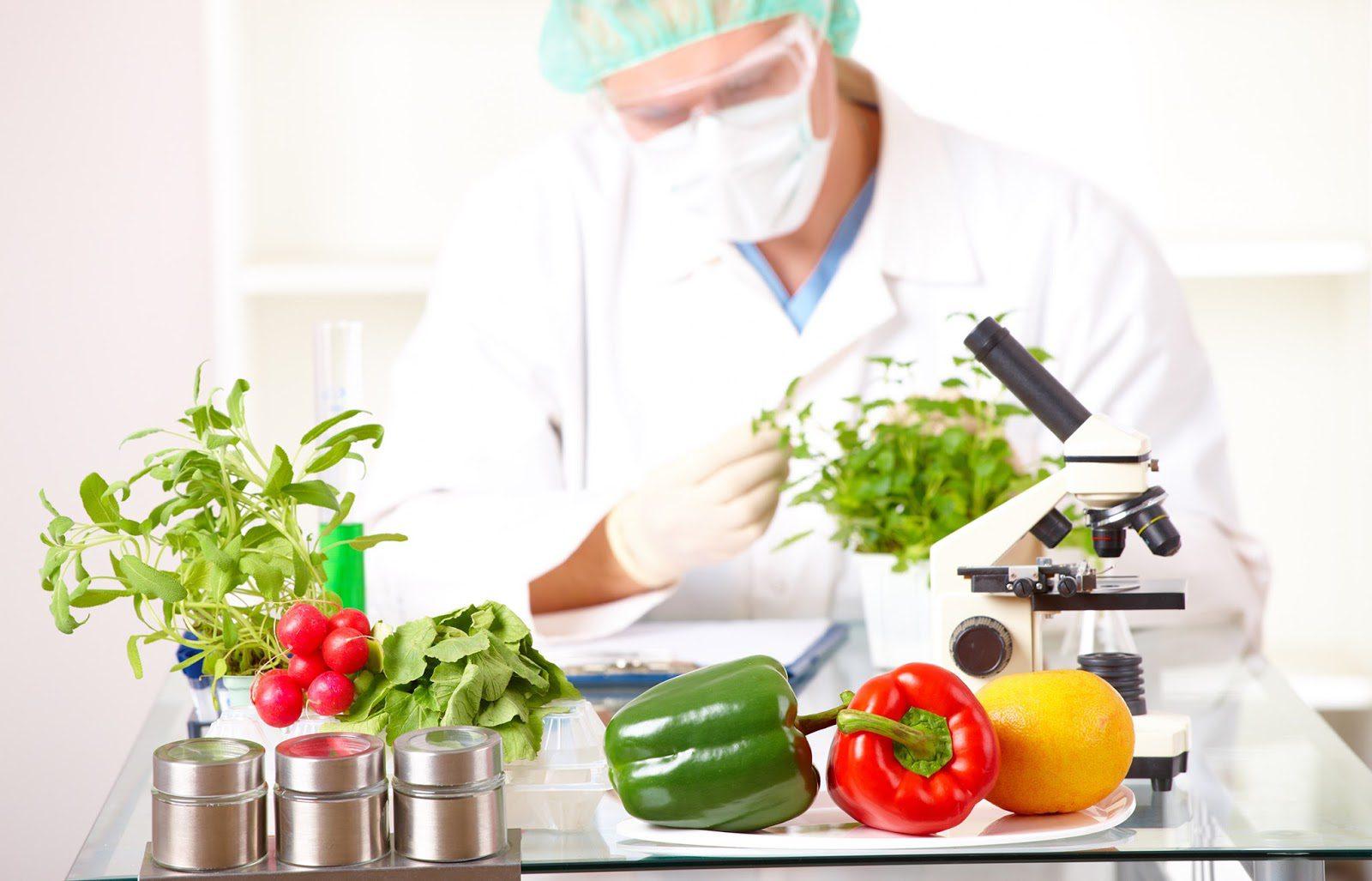 La conexión entre la nutrición y el epigenoma | El Paso, TX Quiropráctico